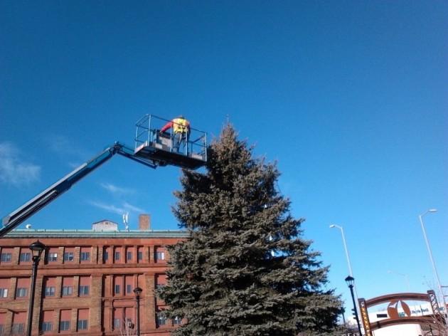 center city park christmas tree
