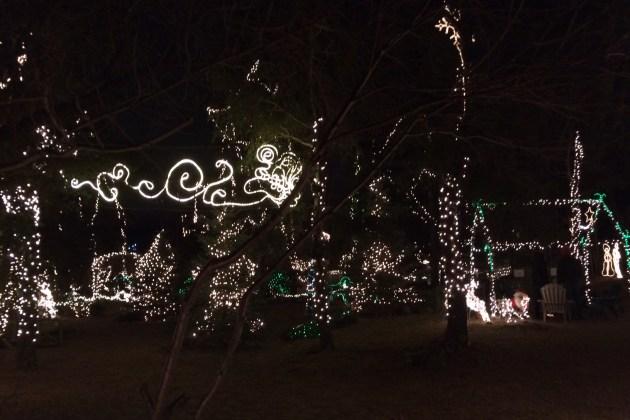 Warm Beach Christmas Lights